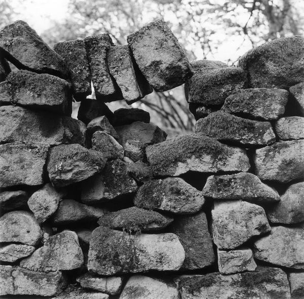 Foundation for Landscape Studies